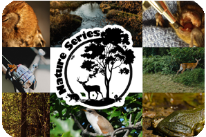 Nature Series with wildlife and tree logo