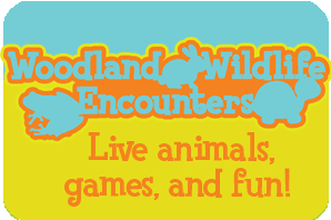Live Animals, games, and fun
