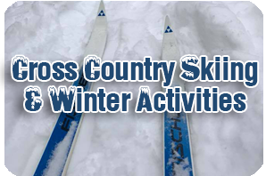 Cross Country Skis on Snow