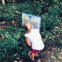 Child reading sign along trail