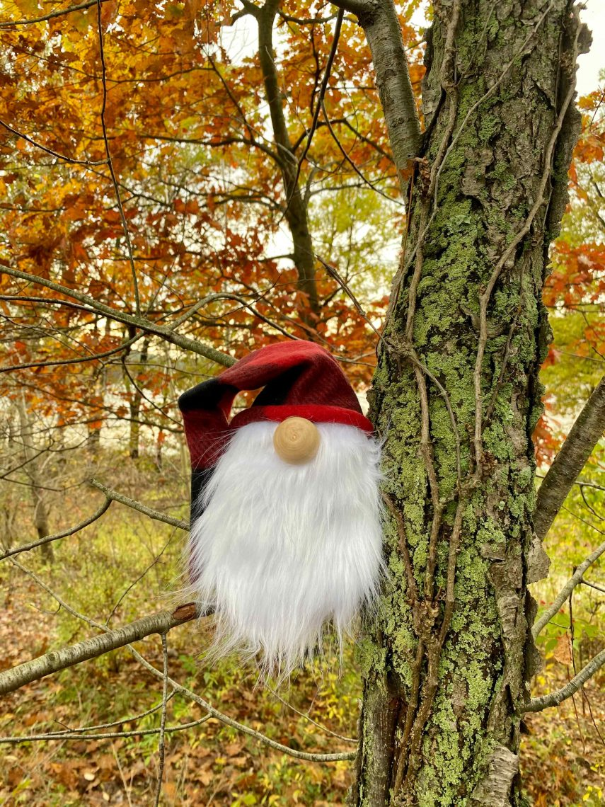 Gnome craft with red hat and white beard in tree