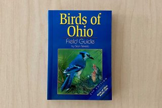 Blue Jay on front cover of book