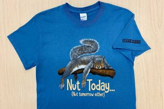 Nut Today text with squirrel on branch