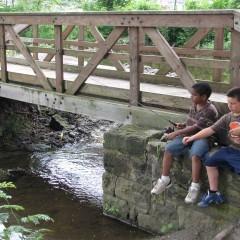 Boys Fishing at Cooks Lagoon