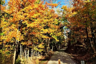 Iron Horse Trail in Fall
