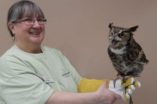 Wildlife Volunteer with Great Horned Owl